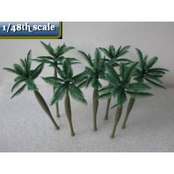 royal palm tree 110 mm