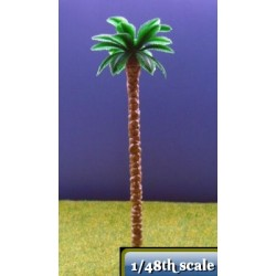 chusan palm tree 90 mm