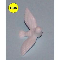 pigeon 15 mm