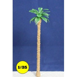 Chusan Palm tree 130 mm