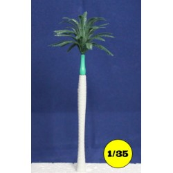 Royal Palm tree 170 mm