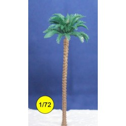 chusan palm tree 90 mm