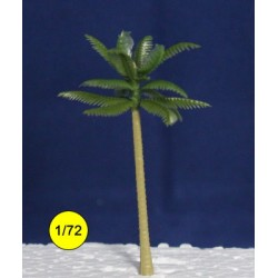 chusan palm tree 70 mm