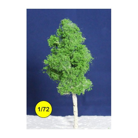 Birch 120 mm