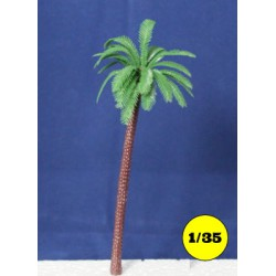 chusan palm tree 190 mm