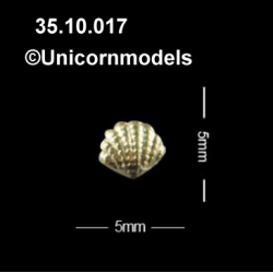 Shell 5 x 5 mm